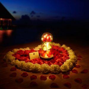led light up roses