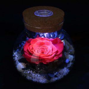 red rose led lights